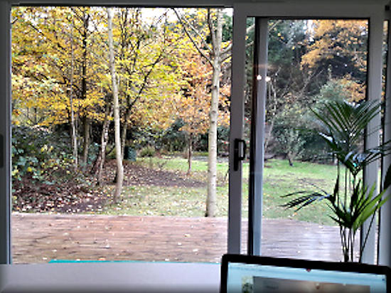 inside The Retreat looking out over trees, meadow and pond